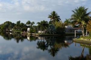 quelques photos prises lors d'un premier voyage en Floride